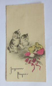 Katzen,  Ostern, Küken,    1930, Kleines Kärtchen  ♥  (49388)