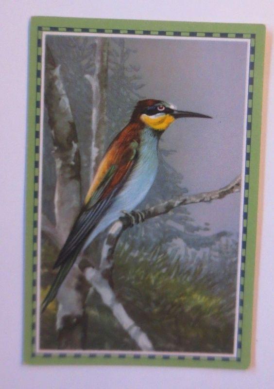 Chlorodont-Sammelbild, Bild 12, Serie 8, Bienenresser, Zahnwerbung ♥(357)