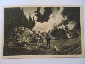 Berufe, Holz, Köhler im Schwarzwald (Baden Württemberg) (30138)