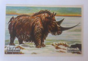 Erdal,  Kwak Bohnerwachs, Serie 29. Bild 2, Tiere des Diluviums  ♥   (70845)