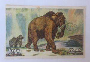 Erdal,  Kwak Bohnerwachs, Serie 29. Bild 1, Tiere des Diluviums  ♥   (70844)