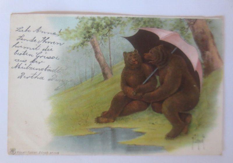 Personifiziert, Bären, Schirm,   1904, H. schmidt ♥ (80047)