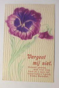 Blumen, Stiefmütterchen, Vergiss mein nicht, 1910, Prägekarte, Relief ♥  (70719)