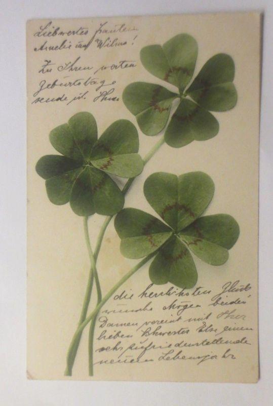 Blumen, Kleeblatt,  1940   ♥ (70704)