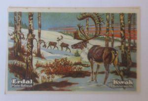 Erdal,  Kwak Bohnerwachs, Serie 29. Bild 3, Tiere des Diluviums  ♥   (70846)