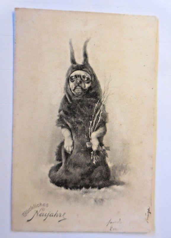 Neujahr, Hund, Krampus,  Hund als Krampus, 1905, Theo Stroefer  ♥  (71111)