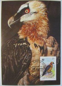 Lesotho, Maximumkarte Geier 1986 (482)
