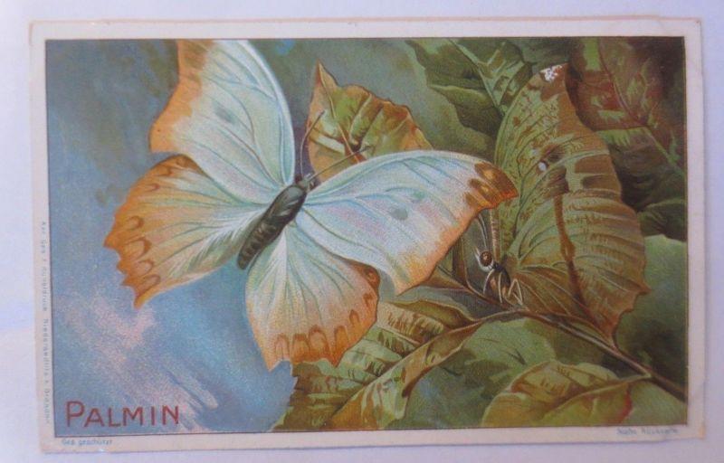 Palmin,  Serie 102, Bild 4. Nachahmer-Schmetterlinge   ♥ (691)