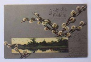 Ostern, Weidenkätzchen, Landschaft  1906, Mailick, Prägekarte (53320)