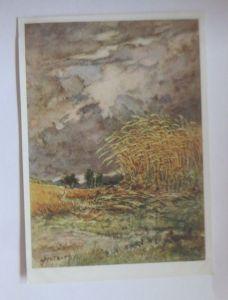 Künstlerkarte, Landschaft, Weizenfelder,  Nr. 10554/7,  1950, Mutert ♥ (4763)