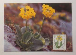 Maximumkarte  Gefährdete Alpenblumen  1983 ♥  (46044)