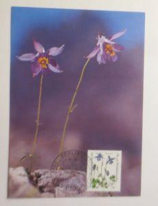 Maximumkarte  Gefährdete Alpenblumen  1983 ♥  (71655)