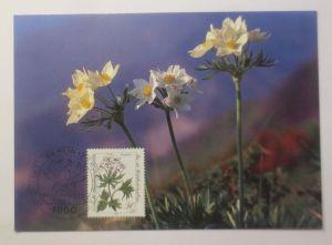 Maximumkarte  Gefährdete Alpenblumen  1983 ♥  (29315)