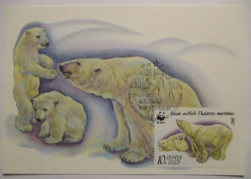 Eisbär Polarbär, Maximumkarte UDSSR 1987 (3156)