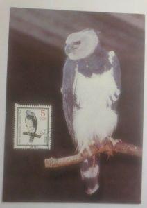 Maximumkarte Vogel  Harpyie 1985   DDR ♥ (37479)