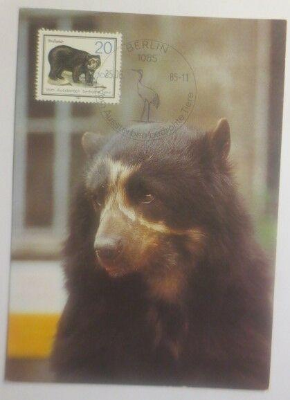 Maximumkarte  Bär Brillenbär 1985  DDR ♥ (37414)