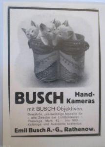 Werbung, Reklame, Kamera,  ca. 1922, Fotoapparat Busch Kameras, Katzen
