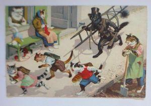 Verlag Max Künzli, Personifiziert, Katzen, Schornsteinfeger,  1950  ♥ 67480