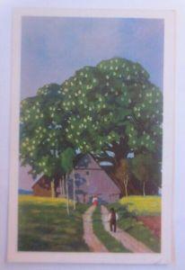 Künstlerkarte, Landschaft, Landhaus,  1901, Meissner & Buch ♥ (21990)