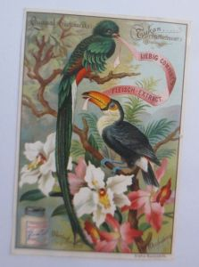 Liebig, Serie 384, Vögel u. Blumen, Quasal, Tukan, Orchideen ♥