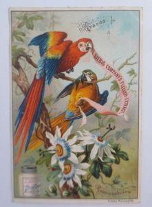 Liebig, Serie 384, Vögel u. Blumen, Araras, Passionsblume  ♥