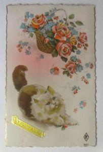 Katzen, Korb, Rosen,  1909 ♥ (54526)