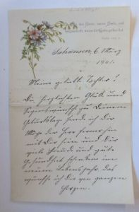 Zierbriefbogen, Briefpapier, Geburtstag,  17,5 cm x 11,5 cm  Jahr 1896 ♥ (8F)