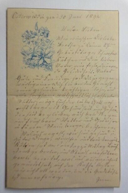 Zierbriefbogen, Briefpapier, Geburtstag, 17,5 cm x 11 cm,  Jahr 1892 ♥ (15F)