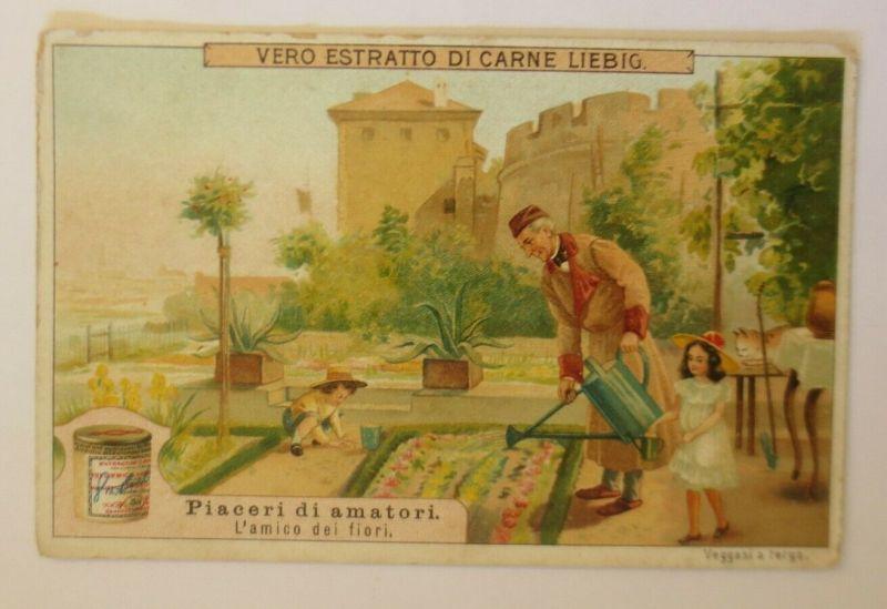 Liebig Italien, Piaceri di amatori, L´amico dei fiori ♥ (47107)