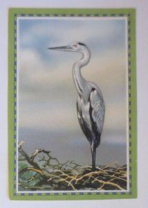 Chlorodont-Sammelbild, Heimische Vögel,  Zahnwerbung ♥ (10000)