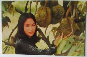 Thailand, Durian Frucht und Frau, 1977 (68214)