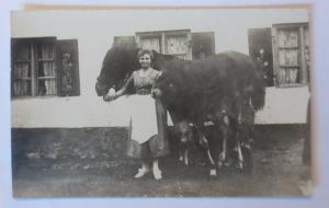 Fotokarte, Frauen, Mode, Pferde, Pony,  1940  ♥ (55463)