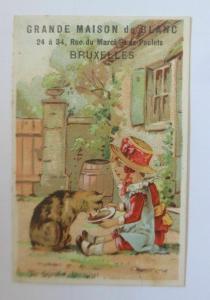 Kaufmannsbilder, Grande Maison de Blanc,  Kinder, Katzen,   1890  ♥