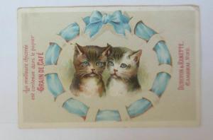 Kaufmannsbilder,  Grain de Cafe, , Katzen,   1900  ♥