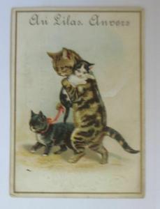 Kaufmannsbilder, Au Lilas, Marcellin Bonnin, Katzen,   1900  ♥