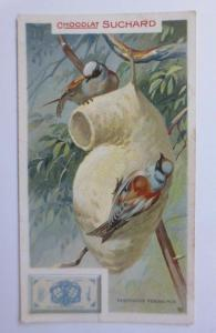 Kaufmannsbilder, Chocolat Suchard, Milka, Aegithalus Pendulinus, 1900 ♥