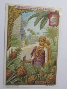 Liebig, Serie 463, Früchte,  Ananas ♥