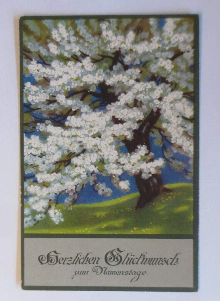 Namenstag, Baum mit Blüten, Landschaft,   1920, Meissner & Buch  ♥ (38254) 0