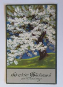 Namenstag, Baum mit Blüten, Landschaft,   1920, Meissner & Buch  ♥ (38254)
