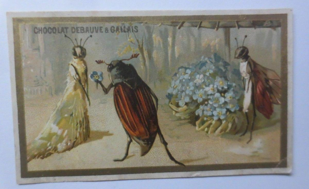 Kaufmannsbilder, Chocolat-Eclair, Personifiziert Maikäfer, Hochzeit,1889♥ 0