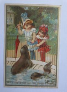 Kaufmannsbilder,  Hygiene de la Poitrine, Kinder, Mode ♥