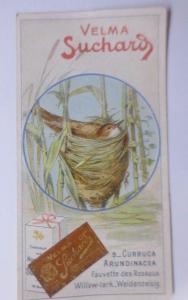 Kaufmannsbilder, Velma Suchard Milka,  Vogel, Nest  1910 ♥