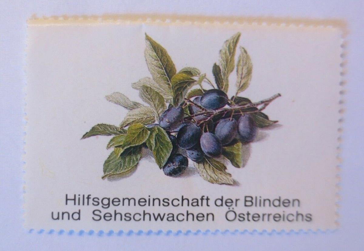 Vignetten, Hilfsgemeinschaft der Blinden u. Sehschwachen Österreichs ♥ (70483) 0