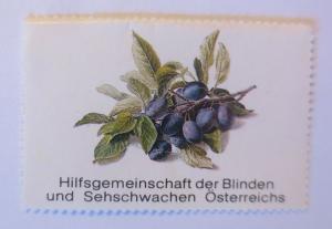 Vignetten, Hilfsgemeinschaft der Blinden u. Sehschwachen Österreichs ♥ (70483)