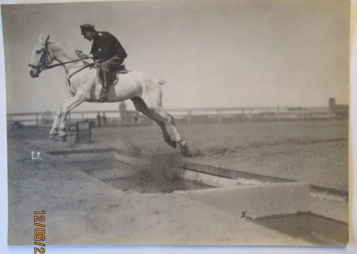 Soldat Pferd, Hindernisrennen Graben, großes Photo 1916 Esch Ludwigslust (65984) 0