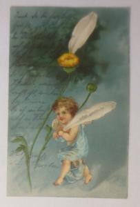 Engel, Amor, Blumen, Oder gar nicht, 1903, Prägekarte  ♥  (67584)