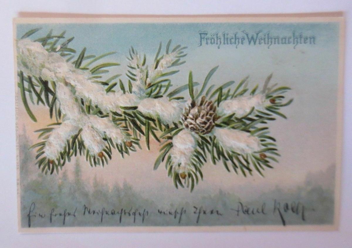 Weihnachten, Tannenzweig, Tannenzapfen, Schnee,  1901, Prägekarte ♥ (67151) 0