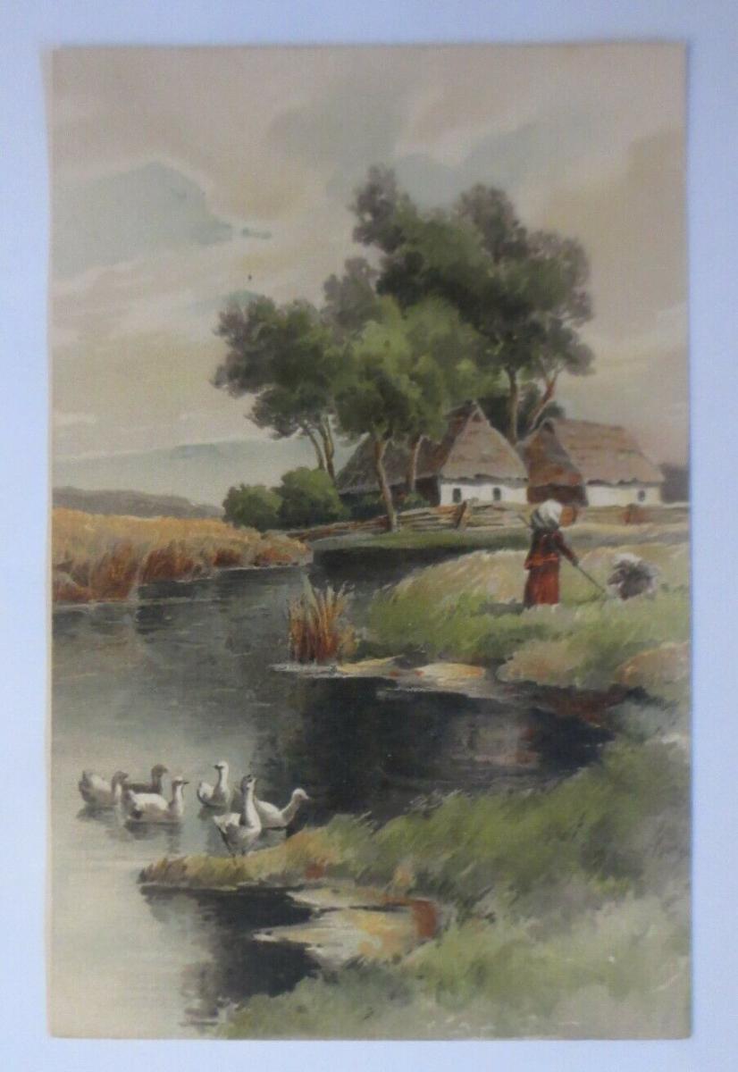 Künstlerkarte, Landschaft, Fluss, Enten, 1900, Meissner & Buch  ♥ (22293) 0