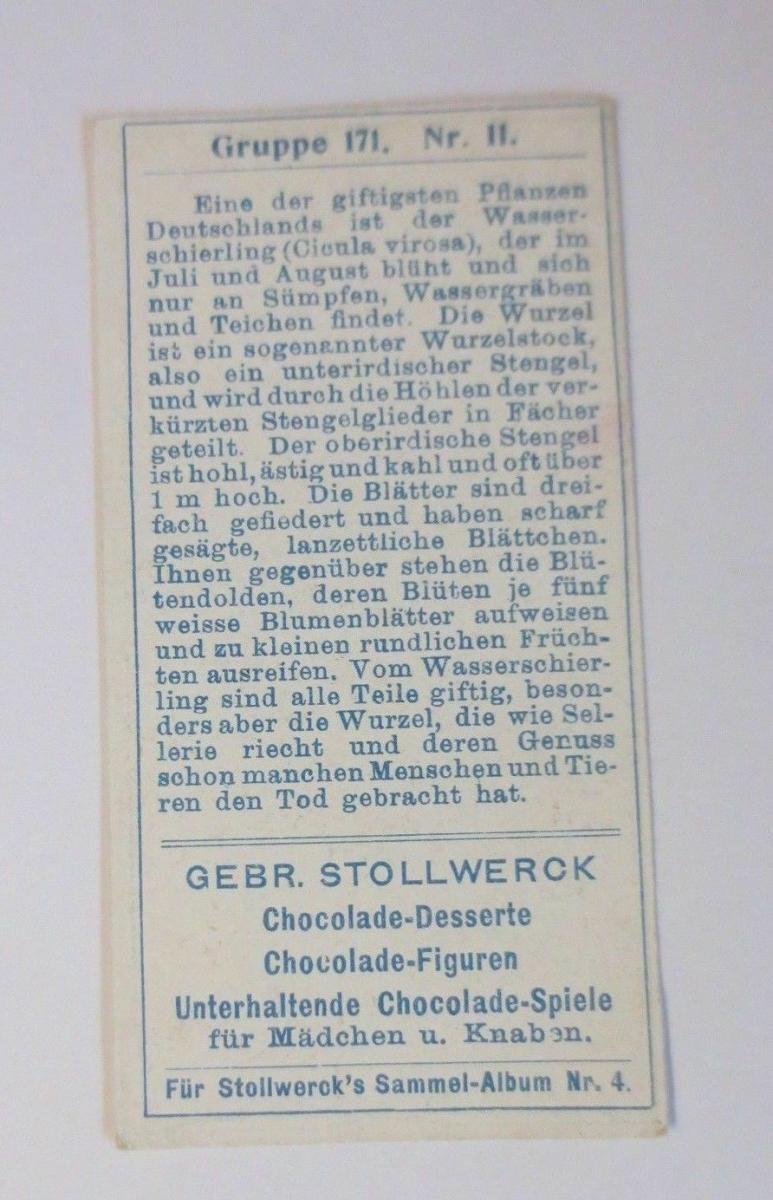 Stollwerck, Gruppe 171, Nr.2, Album ,Nr.4, Giftige Pflanzen   ♥ 1