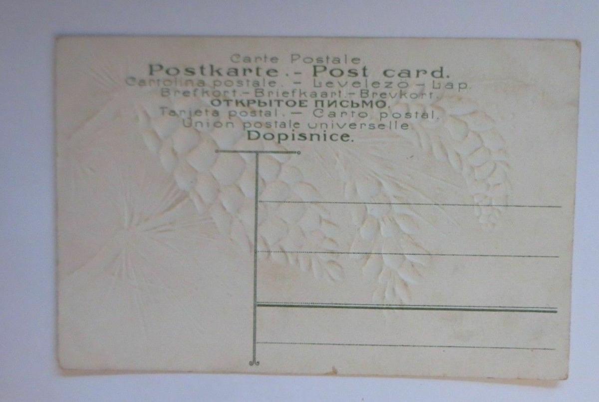 Weihnachten, Tannenzapfen, Kiefern,    1907, Prägekarte  ♥  (67139) 1